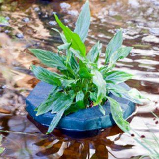 Плавающая корзина для садового пруда