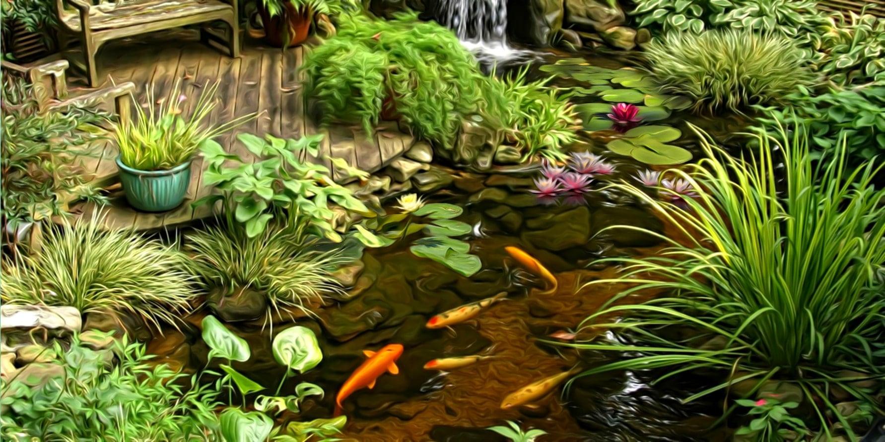 Как подготовить пруд к зиме? 8 советов по правильной зимовке рыб и растений в пруду на даче!