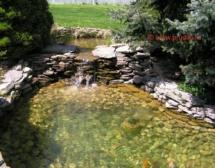 Garden_pond_kupit-vse-dlya-pruda