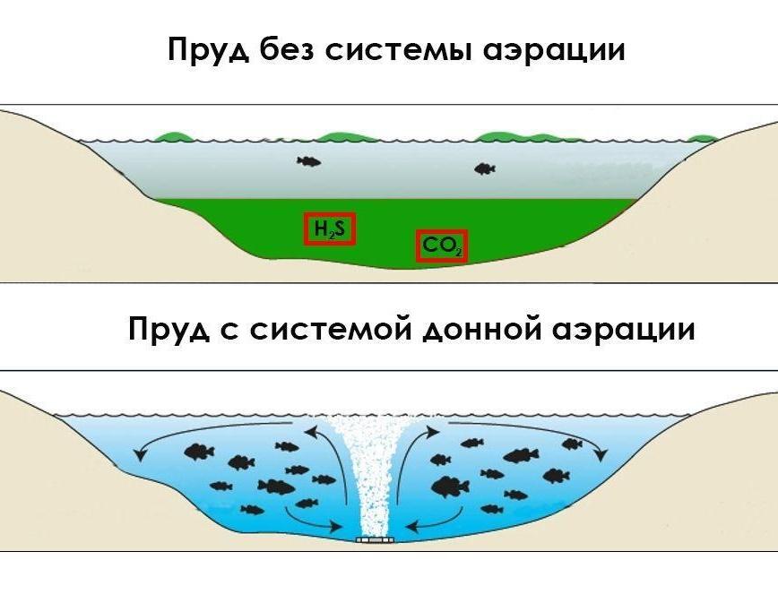 Аэрация в пруду